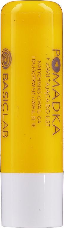 Feuchtigkeitsspendender Lippenbalsam - BasicLab Dermocosmetics Famillias