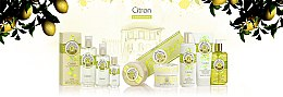 Parfümierte Seife mit Zitrone - Roger & Gallet Cedrat Perfumed Soap — Bild N3