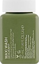 Düfte, Parfümerie und Kosmetik Detox Shampoo für gefärbtes Haar - Kevin.Murphy Maxi.Wash (Mini)