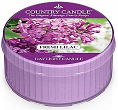 Düfte, Parfümerie und Kosmetik Duftkerze Fresh Lilac - Country Candle Fresh Lilac Daylight