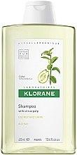 Düfte, Parfümerie und Kosmetik Energetisierendes Shampoo mit Zitrusfrüchten - Klorane Shampoo With Citrus Pulp