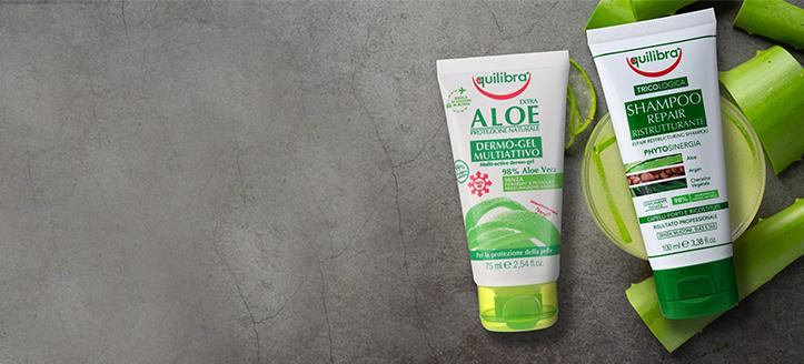 Wir schenken Ihnen ein Haarshampoo beim Kauf von Equilibra Produkten ab CHF 10