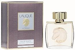 Düfte, Parfümerie und Kosmetik Lalique Equus Pour Homme - Eau de Toilette