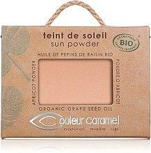Düfte, Parfümerie und Kosmetik Strahlender Kompaktpuder - Couleur Caramel Sun Powder