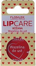 "Düfte, Parfümerie und Kosmetik Lippenvaseline ""Rosa"" - Floslek Lip Care Cosmetic Lip Vaseline Rose"