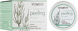 Düfte, Parfümerie und Kosmetik Gesichtspeeling mit Korund, Acker-Schachtelhalm und Teebaum - Sylveco Exfoliating Facial Scrub