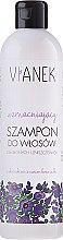 Düfte, Parfümerie und Kosmetik Stärkendes Shampoo - Vianek Strengthening Shampoo