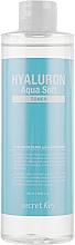 Düfte, Parfümerie und Kosmetik Beruhigendes und regenerierendes Gesichtstonikum mit Hyaluronsäure und pflanzlichen Extrakten - Secret Key Hyaluron Aqua Soft Toner