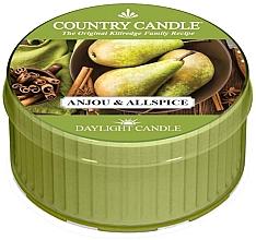 Düfte, Parfümerie und Kosmetik Duftkerze Anjou & Allspice - Country Candle Anjou& Allspice Daylight
