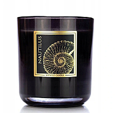 Düfte, Parfümerie und Kosmetik Duftkerze im Glas Nautilus - Kringle Candle Nautilus Black Jar Candle