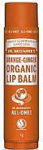 Düfte, Parfümerie und Kosmetik Feuchtigkeitsspender und schützender Lippenbalsam mit Orangenöl und Ingwer - Dr. Bronner's Orange & Ginger Lip Balm
