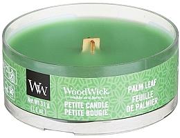Düfte, Parfümerie und Kosmetik Mini Duftkerze im Glas Palm Leaf - Woodwick Petite Candle Palm Leaf