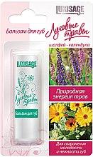 Düfte, Parfümerie und Kosmetik Lippenbalsam mit Salbei und Ringelblume - Luxvisage