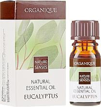 Düfte, Parfümerie und Kosmetik Ätherisches Eukalyptusöl - Organique Natural Essential Oil Eucalyptus