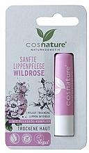 Düfte, Parfümerie und Kosmetik Pflegender Lippenbalsam für trockene Haut mit Wildrose - Cosnature