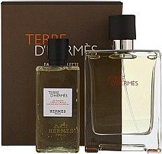 Düfte, Parfümerie und Kosmetik Hermes Terre dHermes - Duftset (Eau de Toilette 100ml + Duschgel 80ml)