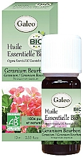 Düfte, Parfümerie und Kosmetik Organisches ätherisches Öl mit Geranie - Galeo Organic Essential Oil Geranium Bourbon