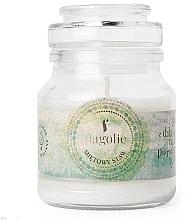 Düfte, Parfümerie und Kosmetik Duftkerze im Glas Minzteich - Flagolie Scented Candle Boho Mint Pond