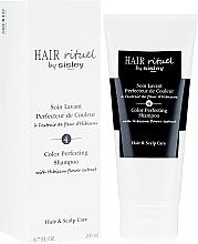 Düfte, Parfümerie und Kosmetik Farbschützendes Shampoo mit Hibiskusblütenextrakt - Sisley Hair Rituel Shampoo
