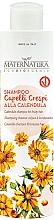 Düfte, Parfümerie und Kosmetik Shampoo für lockiges Haar mit Ringelblume - MaterNatura Shampoo with Calendula