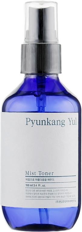 Gesichtsonikum-Spray mit Koptis-Extrakt - Pyunkang Yul Mist Toner