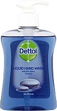 Düfte, Parfümerie und Kosmetik Flüssige Handseife Meeresmineralien und Aloe Vera - Dettol Cleanse Hand Wash With Sea Minerals & Aloe Vera