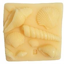 Düfte, Parfümerie und Kosmetik Handgemachte Naturseife mit Kokos- und Grapefruitöl - Bomb Cosmetics What the Shell Art of Soap