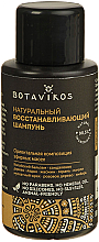 Düfte, Parfümerie und Kosmetik Regenerierendes Shampoo - Botavikos Natural Repairing Shampoo (Mini)
