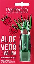Düfte, Parfümerie und Kosmetik Feuchtigkeitsspendender Lippenbalsam mit Aloe Vera und Himbeere  - Perfecta Aloe Vera + Raspberry