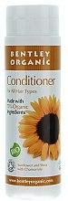 Düfte, Parfümerie und Kosmetik Haarspülung mit Sonnenblume, Kamille und Shea-Öl - Bentley Organic Conditioner