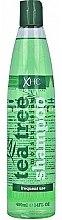Düfte, Parfümerie und Kosmetik Feuchtigkeitsspendendes Shampoo für den täglichen Gebrauch - Xpel Marketing Ltd Tea Tree Shampoo