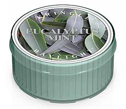 Düfte, Parfümerie und Kosmetik Duftkerze Eucalyptus Mint - Kringle Candle Daylight Eucalyptus Mint