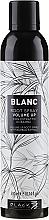 Düfte, Parfümerie und Kosmetik Volumen-Haarspray mit Bambusextrakt - Black Professional Line Blanc Volume Up Root Spray