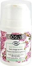 Mattierende Tagescreme für fettige Haut - Coslys Day Cream Oily Skin Types — Bild N1