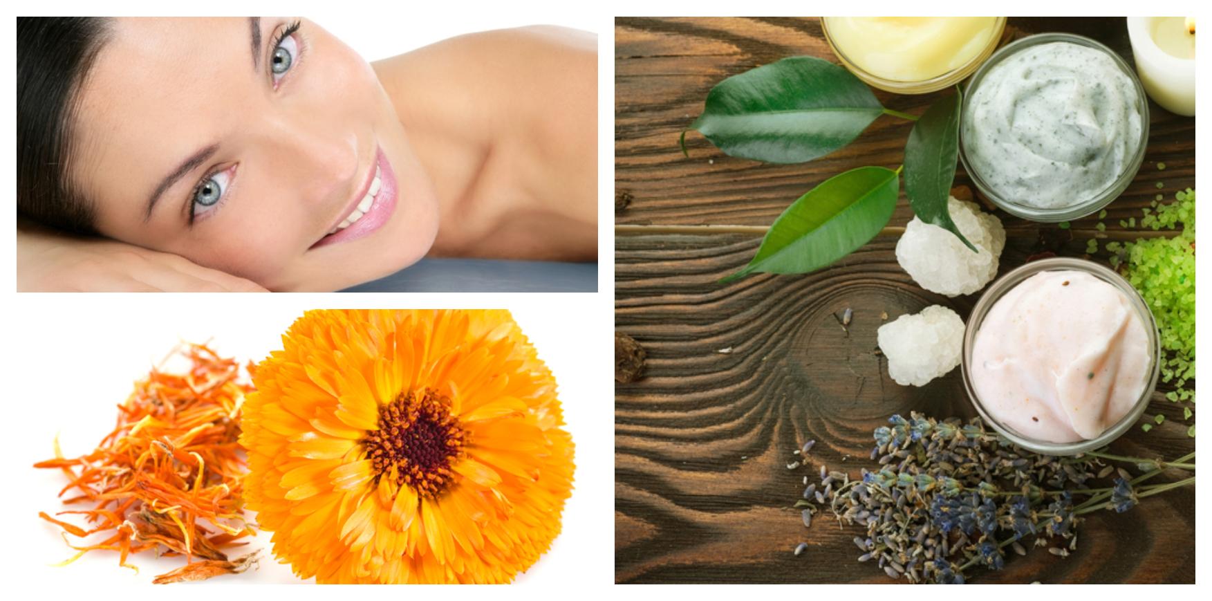 Stammzellen in der Kosmetik: Hautpflege der nächsten Generation
