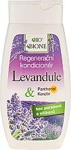 Düfte, Parfümerie und Kosmetik Regenerierende Haarspülung mit Lavendel - Bione Cosmetics Lavender Regenerative Hair Conditioner