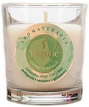 Düfte, Parfümerie und Kosmetik Duftkerze im Glas Refreshing Peace - Flagolie Fragranced Candle Refreshing Peace