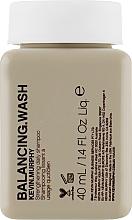 Düfte, Parfümerie und Kosmetik Stärkendes Shampoo für den täglichen Gebrauch - Kevin.Murphy Balancing.Wash (Mini)