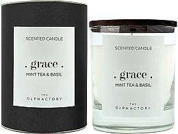 Düfte, Parfümerie und Kosmetik Duftkerze im Glas Grace Mint Tea & Basil Black Design - Ambientair The Olphactory Grace Mint Tea & Basil Black Design