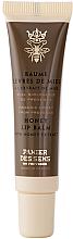 Düfte, Parfümerie und Kosmetik Regenerierender Lippenbalsam mit Honigextrakt - Panier Des Sens Regenerative Honey Lip Balm