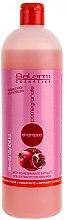 Düfte, Parfümerie und Kosmetik Shampoo mit Granatapfelextrakt - Salerm Pomegranate Shampoo