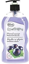 Düfte, Parfümerie und Kosmetik Flüssige Handseife mit Johannisbeeren und Aloe Vera - Bluxcosmetics Naturaphy Hand Soap