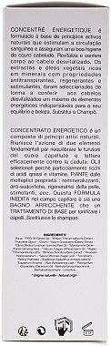 Energetisierendes Haarkonzentrat - Leonor Greyl Concentre Energetique — Bild N3